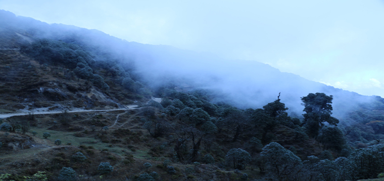 A Birthday Trek in the Himalayas