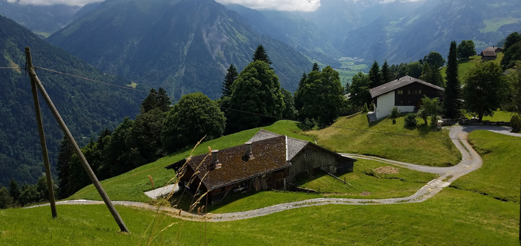 Fifty Shades of Green and More in Switzerland