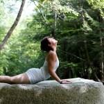 International Yoga Day a Culmination of a Surge in Yoga Culture