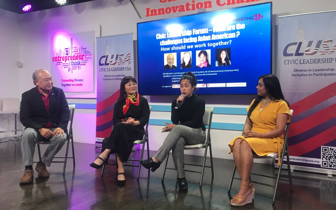 United We Stand: Civic Leadership Initiatives For Asian American Representation