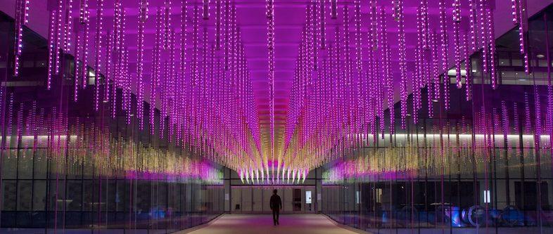 Illuminate SF Festival of Lights