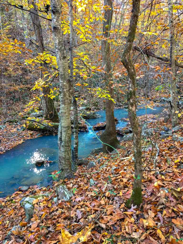 Mulberry Creek with fall foliage