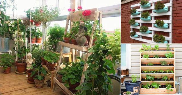 17 Creative Vertical Balcony Garden Ideas India Gardening