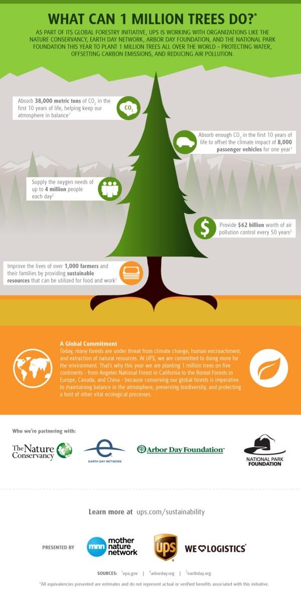 trees-infographics