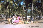 Kovalam Beach (Kerala, India)