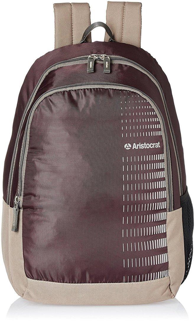 Aristocrat Purple Casual Backpack