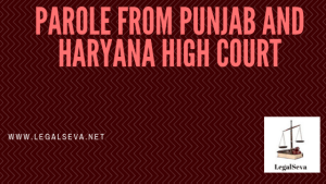 Parole from Punjab and Haryana High Court at Chandigarh