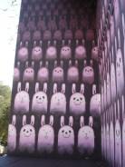 Happy Bunnies in San Francisco