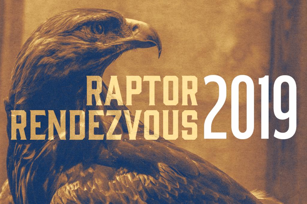 Image result for Raptor Rendezvous