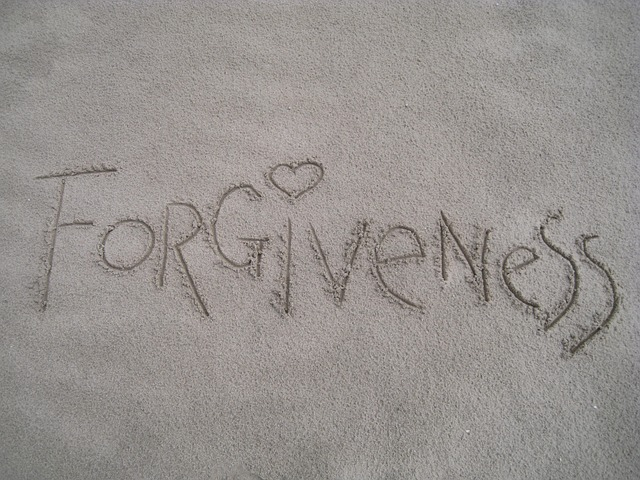 Chapter XXIX: I Believe in the Forgiveness of Sins