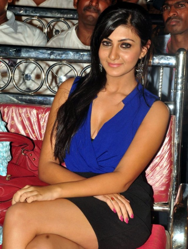 Neelam Upadhyay in Hot Blue Dress at Action 3D Gummadikaya Function