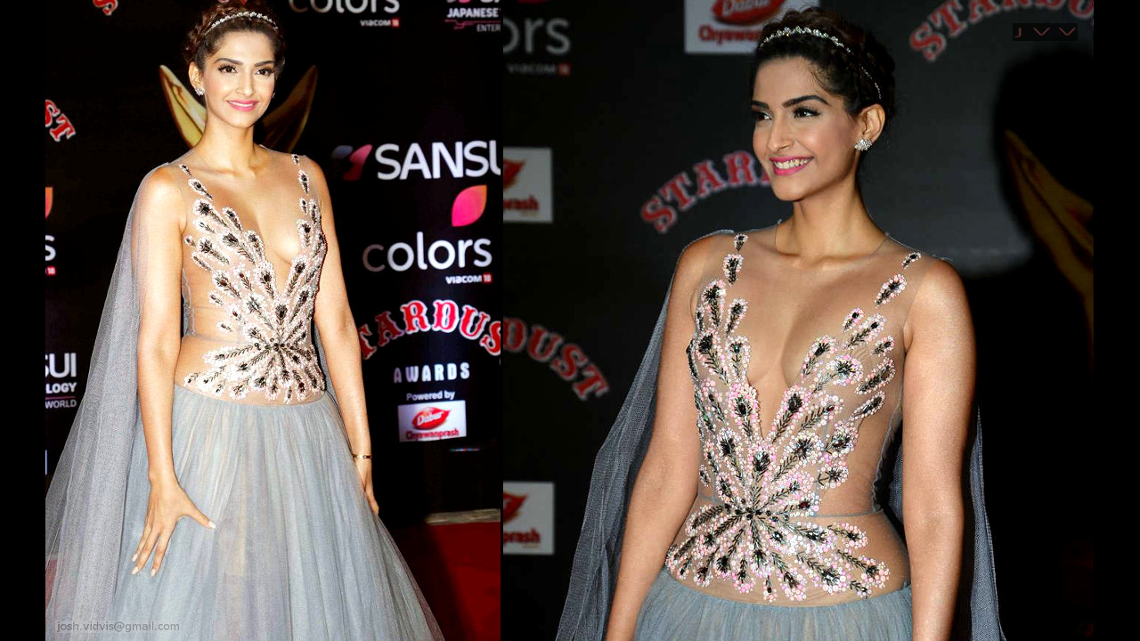 Sonam Kapoor sexy cleavage show in a V neck transparent gown