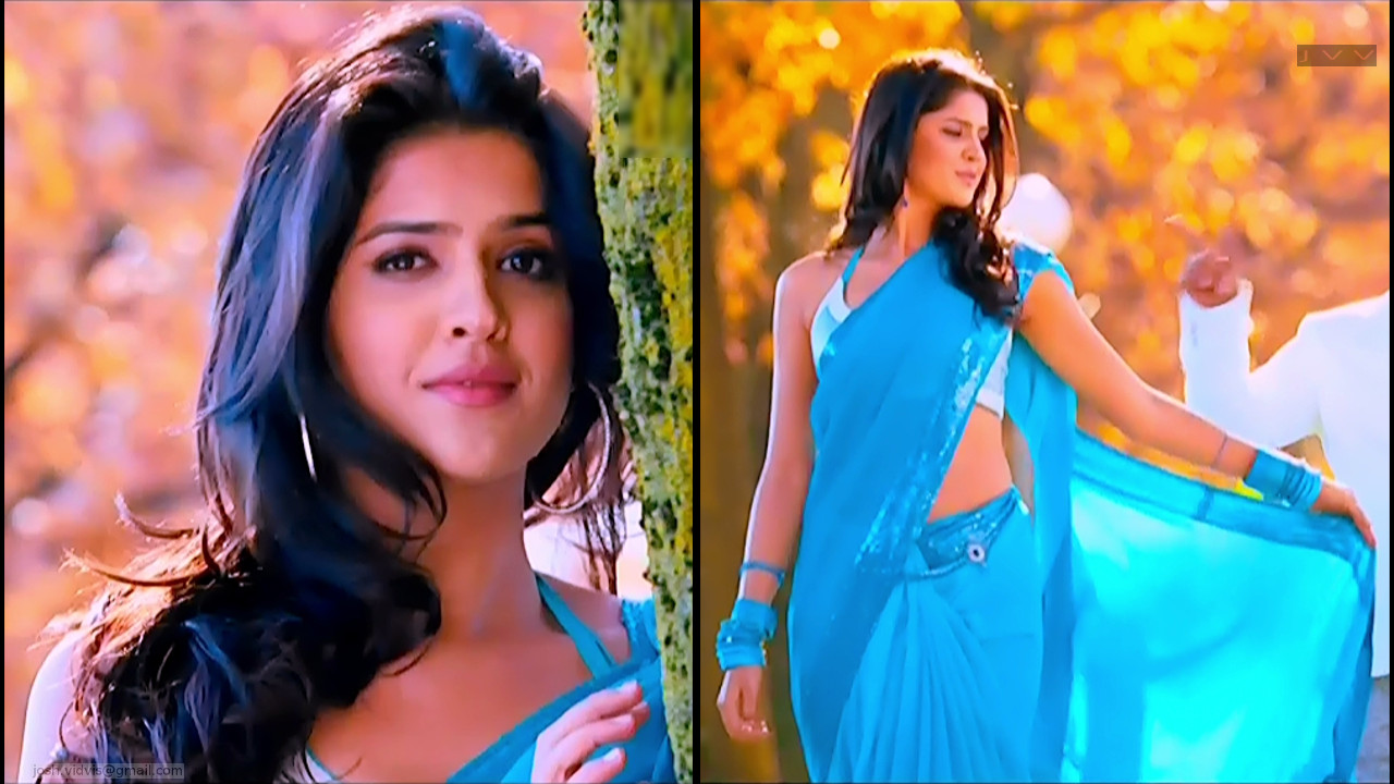 Deeksha Seth_05_Hot saree song