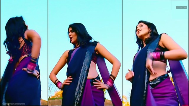 Deeksha Seth_07_Hot saree song