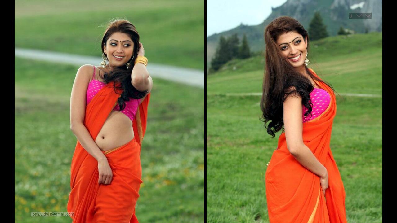 Pranitha Subhash_AD-Song1_13_Hot Saree navel Pics