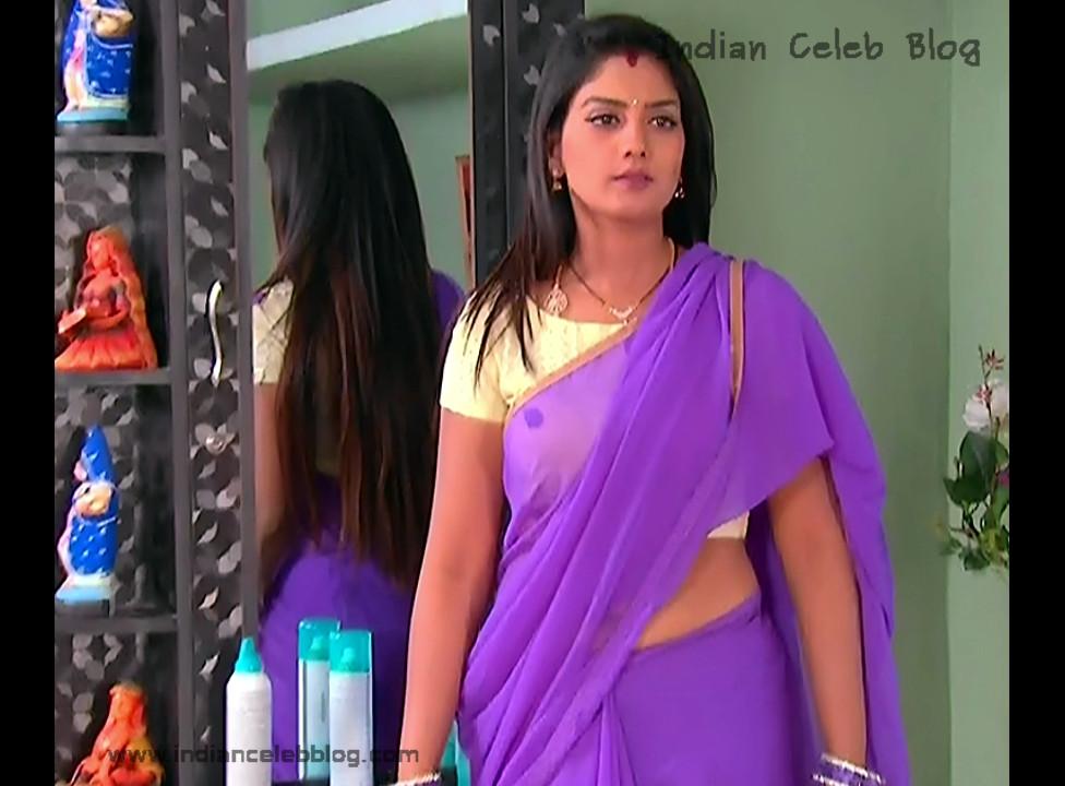 Karuna_Telugu TV Actress_11_Hot Saree Pics