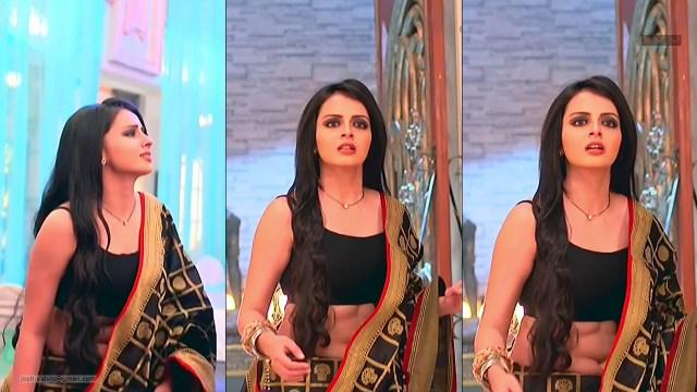 Shrenu Parikh_Hindi TV Actress_06_Saree Pics