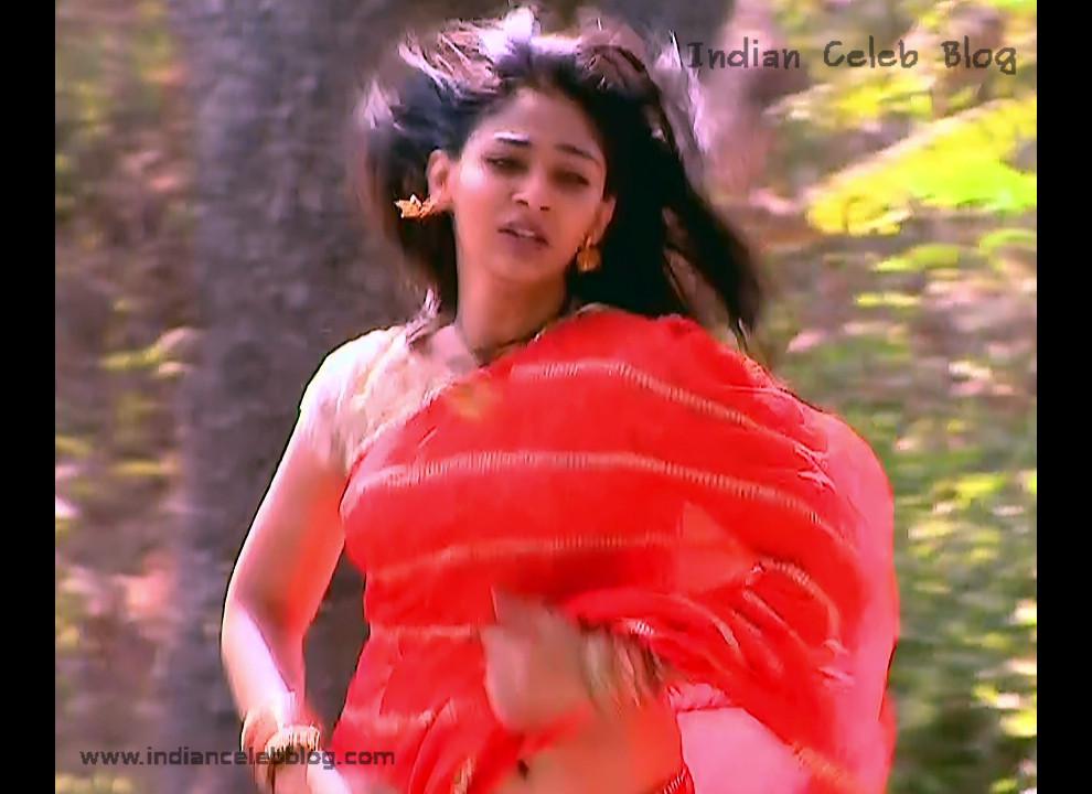Vidhi Pandya_Hindi TV Actress_08_Hot Saree Pics