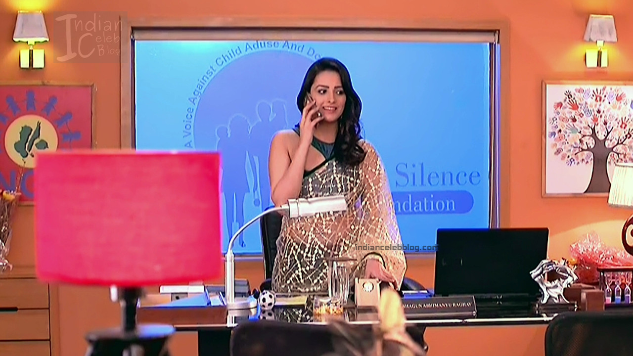 Anita Hassanandani_Hindi TV Actress_16_Hot saree photos