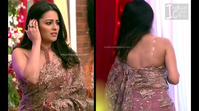 Anita Hassanandani_Hindi TV Actress_3_Hot saree photos
