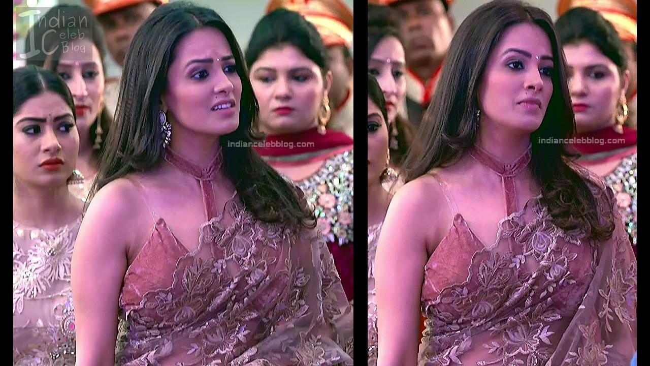 Anita Hassanandani_Hindi TV Actress_7_Hot saree photos