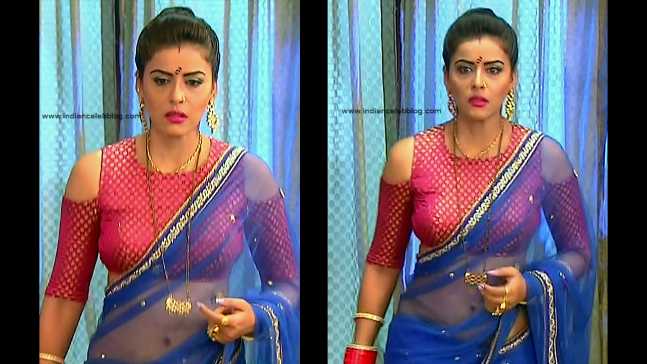 Ginnie Virdi_Hindi TV Actress_04_Hot backless saree navel pics