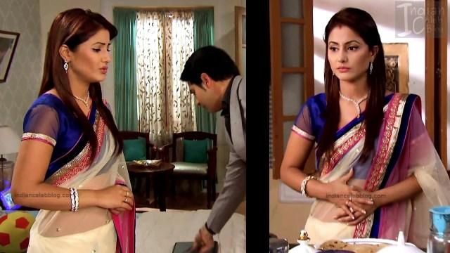 HinaKhan_Hindi TV Actress YRKKH S1_5_Hot Saree navel pics