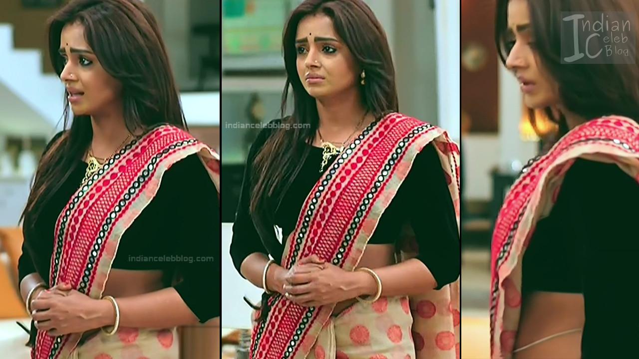 Parul Chauhan_Hindi TV Actress_12_Hot Saree photo