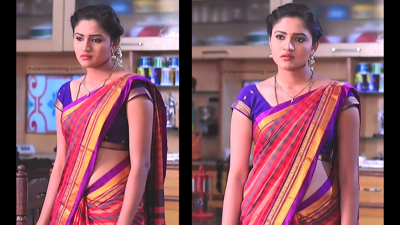 Ranjani Raghavan_Kannada TV Actress_12_Hot Saree Pics