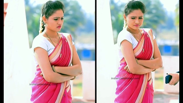 Ranjani Raghavan_Kannada TV Actress_3_Hot Saree Pics