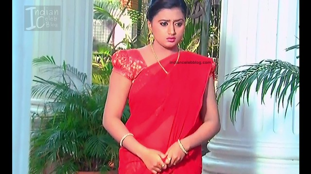 Telugu TV Actress_10_Hot Saree Pic