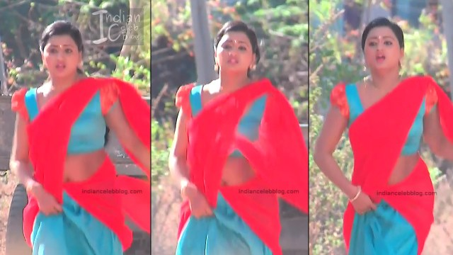Telugu TV Actress_7_Hot Saree Pic