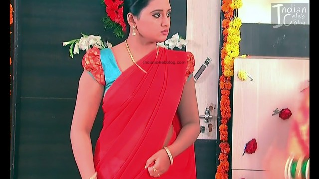 Telugu TV Actress_8_Hot Saree Pic