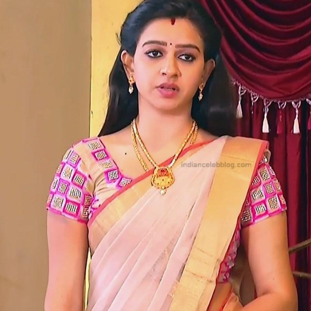 Divya_Tamil TV Actress SMG-S2_1_Saree photo