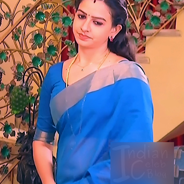 Divya Tamil TV Serial Actress Pics In Saree