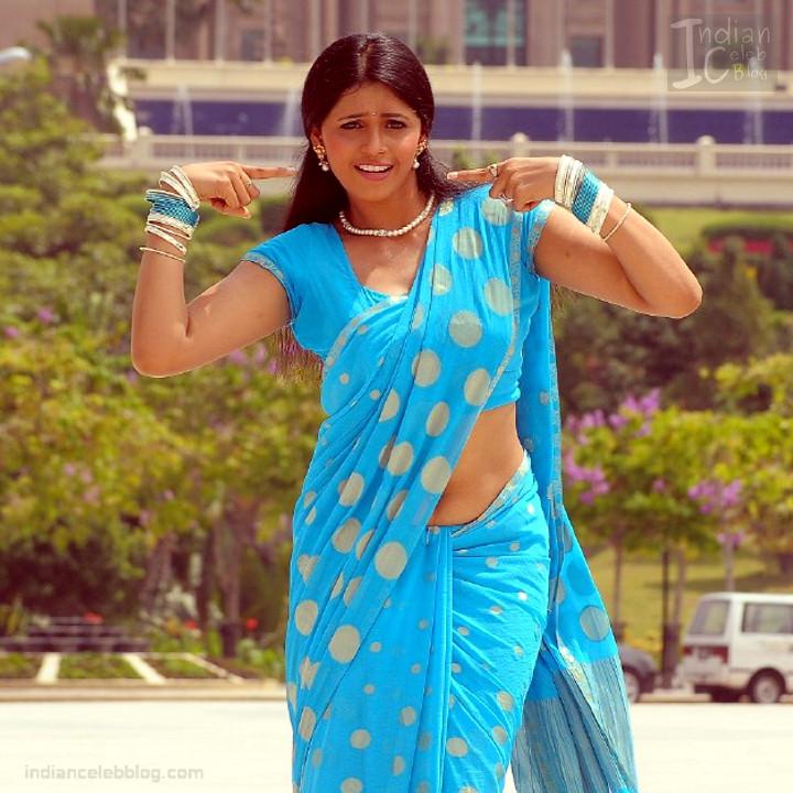 Hema_Tamil Actress_13_Hot Saree Pics