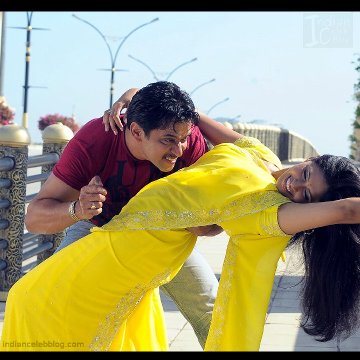 Hema_Tamil Actress_14_Hot Saree Pics