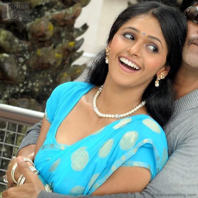 Hema_Tamil Actress_16_Hot Saree Pics