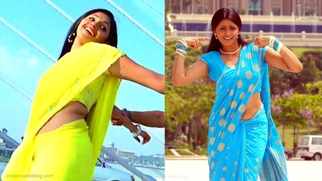 Hema_Tamil Actress_19_Hot Saree Pics