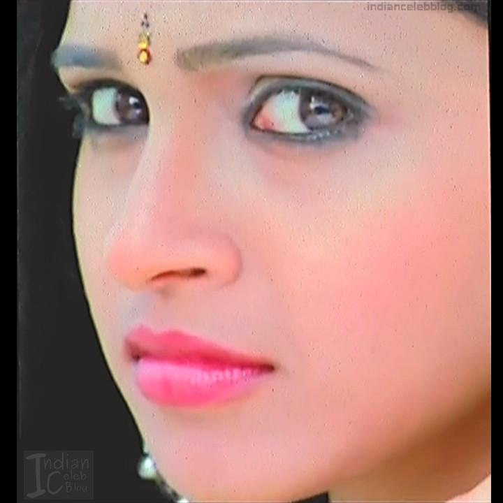 Hema_Tamil Actress_1_Hot Saree Pics