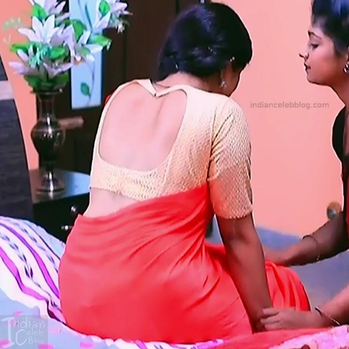 Kannada TV Actress Gallery 2_26_Hot saree pics