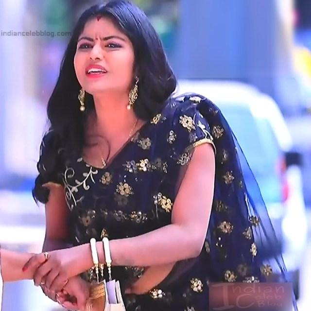 Kannada TV Actress Gallery 2_31_Hot saree pics