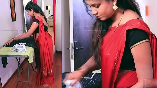 Kannada TV Actress Gallery 2_8_Hot saree pics