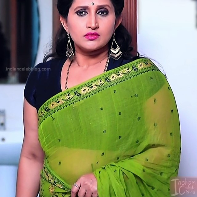 Kannada TV Actress_Comp 1 Mature_13_Hot Saree photos