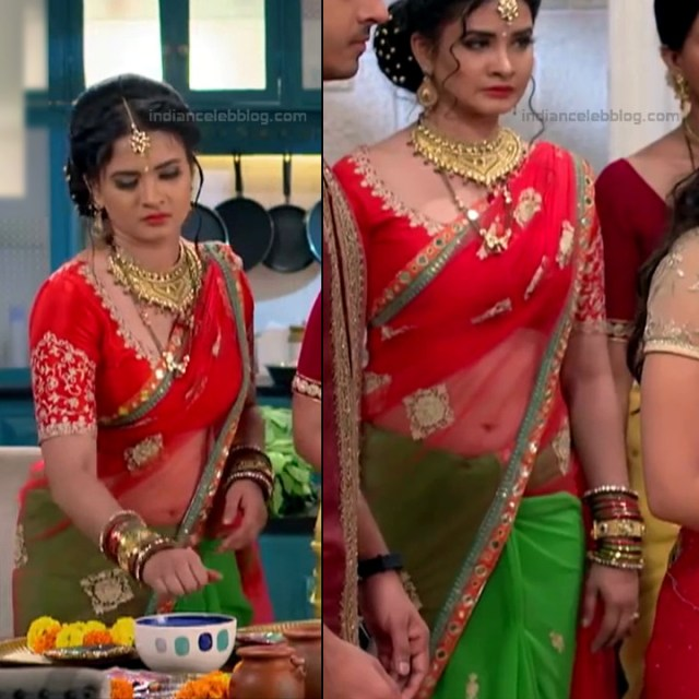 Neha Dangal_Hindi TV Actress TumhiHBST-S1_13_Hot Saree pics