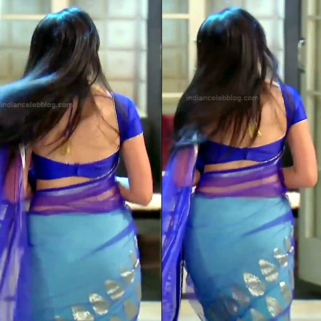 Shrenu Parikh_Hindi TV Actress - Hot Saree Pics S1_10