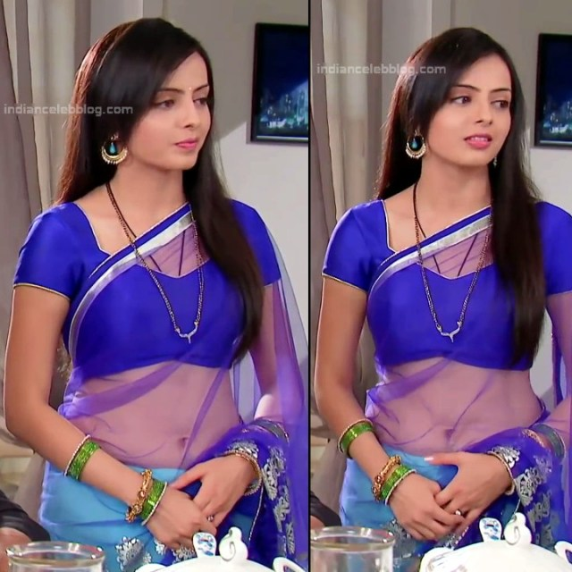 Shrenu Parikh_Hindi TV Actress - Hot Saree Pics S1_2