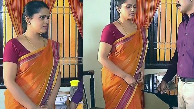 Sudha Tamil TV Actress Mahalakshmi S2 15 Hot Saree Photos