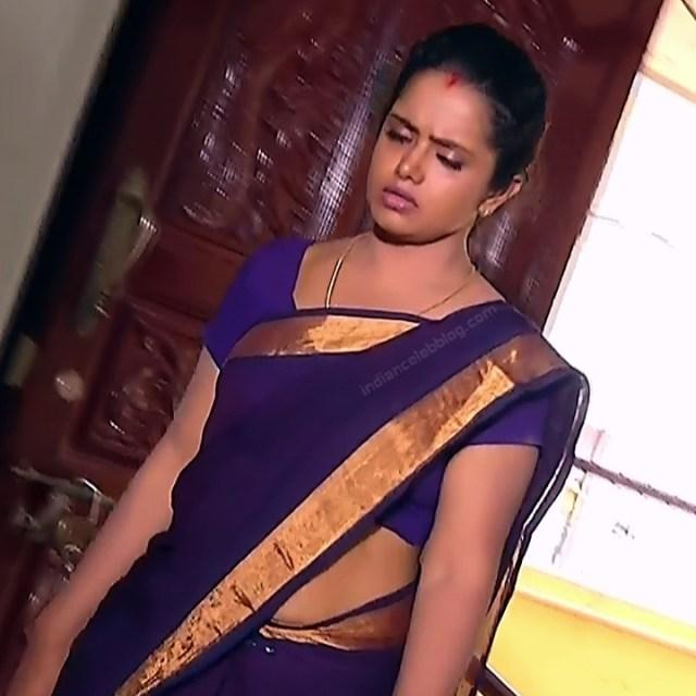 Sudha Tamil TV Actress Mahalakshmi S2 2 Hot Saree Photos