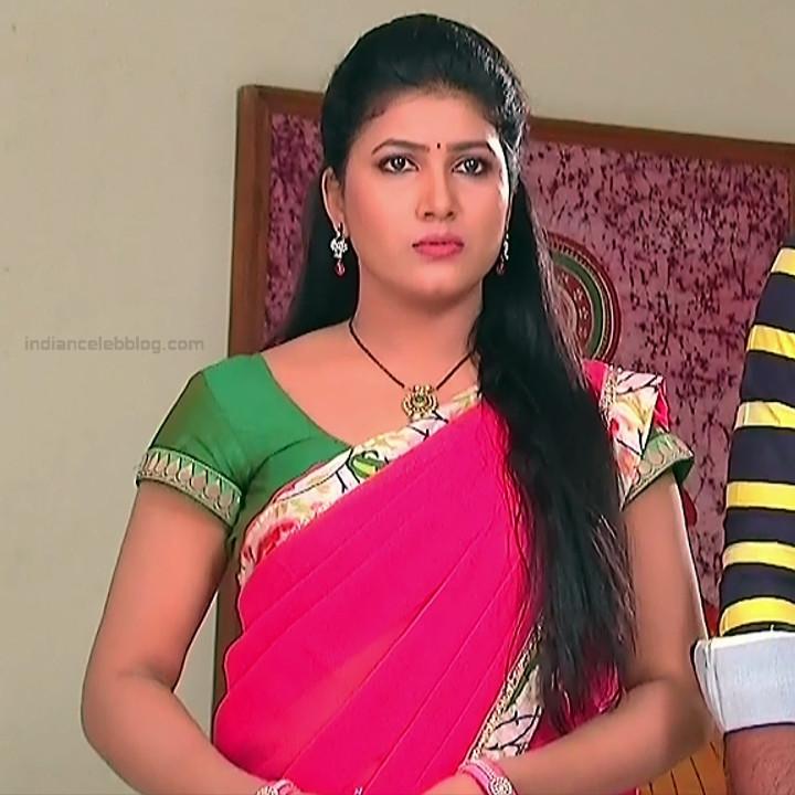 Telugu TV Actress Compilation S1_8_Hot Saree photos